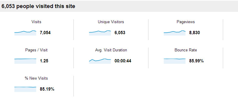 Website Visitor Analysis